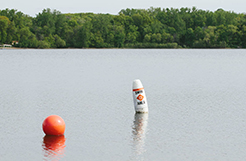 Buoys in the lake