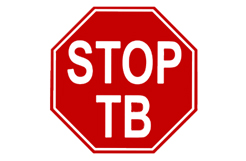 www.stoptb.org is an excellent resource
